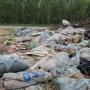 Три несанкционированные свалки ликвидируют в Холмогорском районе