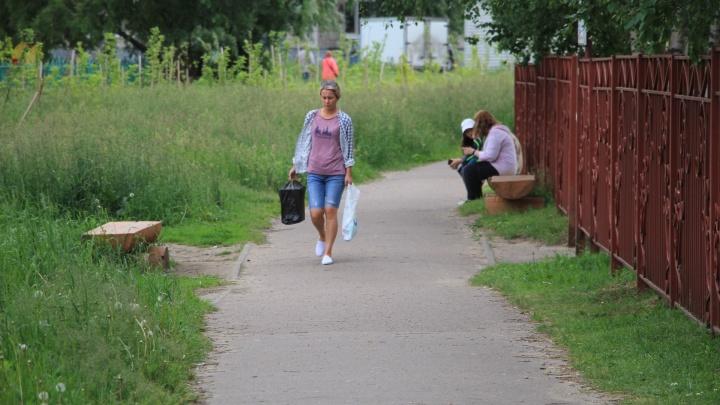 Украли, выкопали, бросили: как выглядят «Аллеи славы», за которые Архангельск боролся год назад