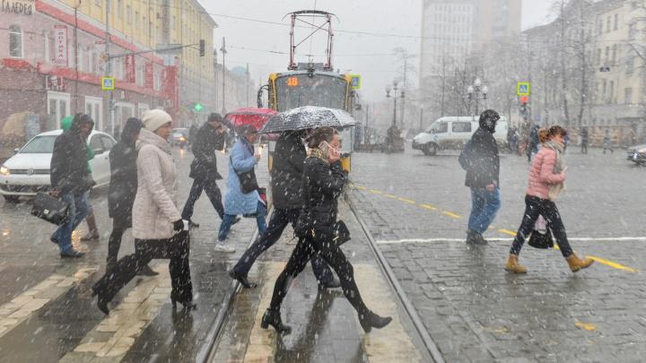 В выходные в Екатеринбурге пойдет мокрый снег