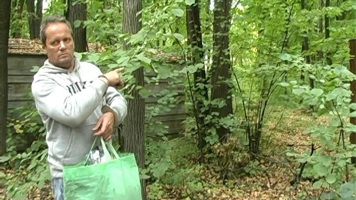 В Самаре ищут жертв разбойника с Московского шоссе