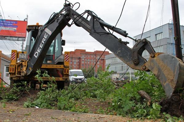 Вчера за ЦУМом вырубили клёны и яблони, чтобы расширить платную автостоянку