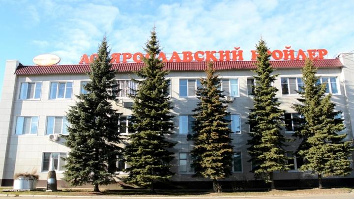 «Ярославский бройлер» провел благотворительную акцию для блокадников