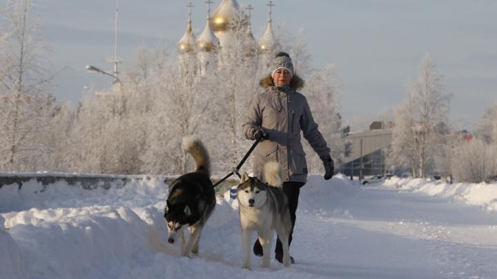 А ты такой холодный: смотрим, как Архангельск переживает морозы
