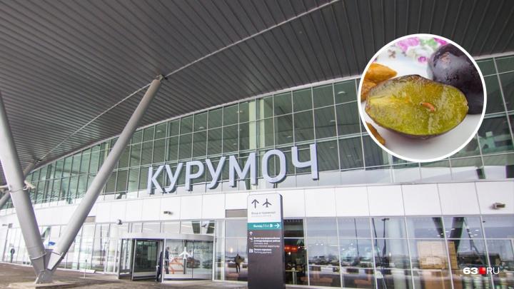 В Самарскую область завезли сливу, зараженную экзотическими паразитами