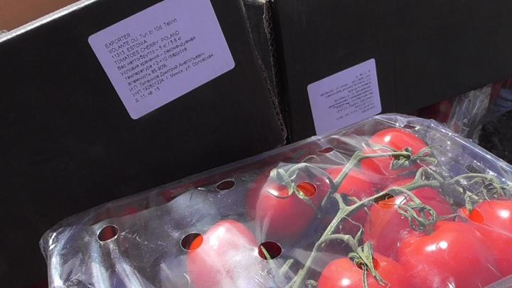 Польские груши и томаты уничтожили в Кургане