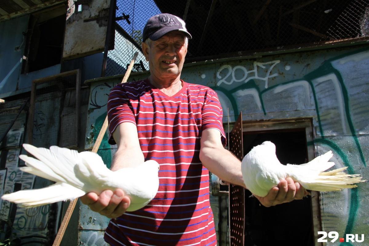 Анатолий не зарабатывает на голубях и занимается ими просто в свое удовольствие