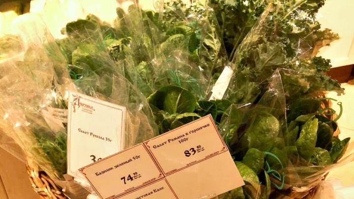 В Новосибирске начали торговать модной капустой, которую вырастили в технопарке