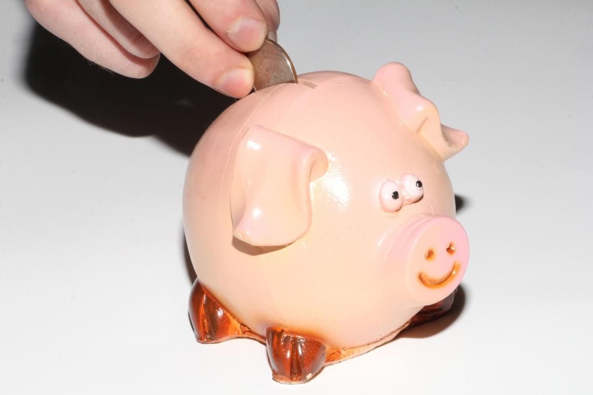 Выгодное предложение для бизнеса: «Россельхозбанк» запустил акцию «Хорошее начало!»