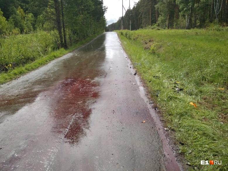 Авария произошла на узкой дороге, ведущей от санатория «Луч» к поселку Верхняя Сысерть