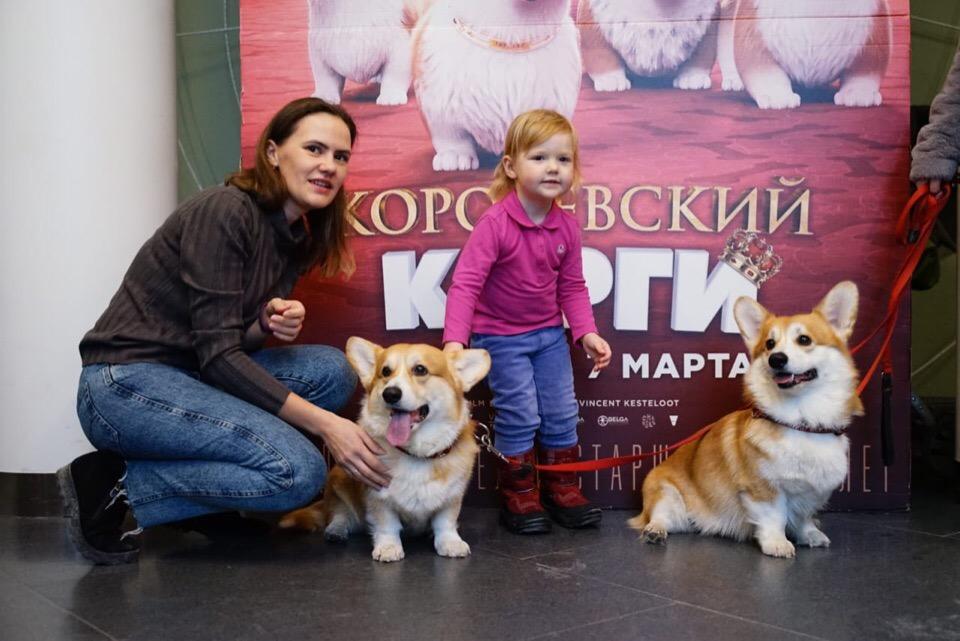 По словам хозяев корги, эти собаки очень добродушны и всегда рады общению с людьми