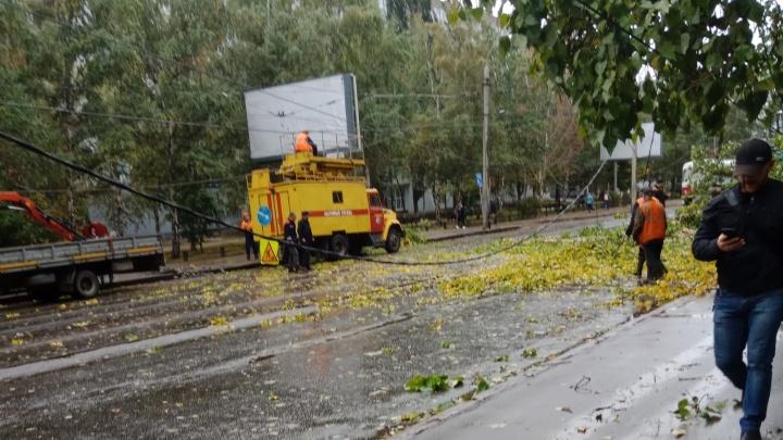 Дорогу перекрыли: в Самаре из-за сильного ветра оказалось парализовано движение на Мичурина