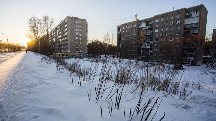 Мэрия Новосибирска разрешила новую стройку на скандальном участке на Бориса Богаткова