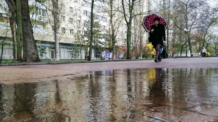 Мокрый Ростов: дождливая погода в объективе камеры 161.RU