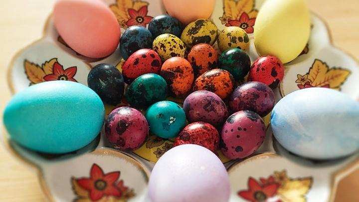 Собери все яйца вместе: тест на внимательность от 74.ru
