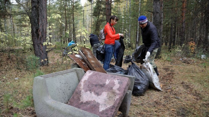 В Зауралье от мусора очистили 70 гектаров леса вдоль дороги Курган — Екатеринбург