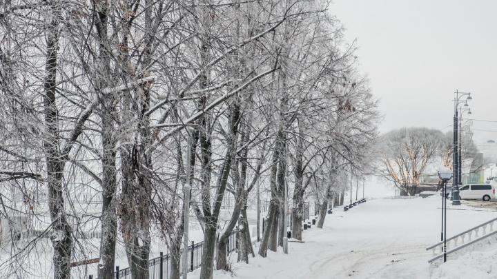 На улицах будет скользко: в Прикамье похолодает до -23 °С