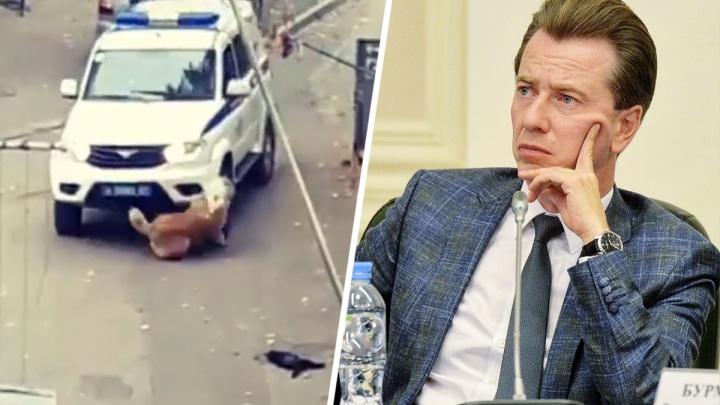 «Собачий защитник» из Госдумы РФ потребовал уволить ростовских полицейских, сбивших собаку