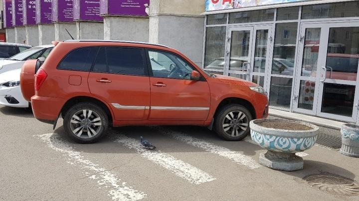 «Я паркуюсь как»: наглецы на газонах и захватчики тротуаров