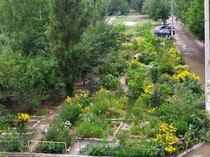 Так сад выглядит иРокна