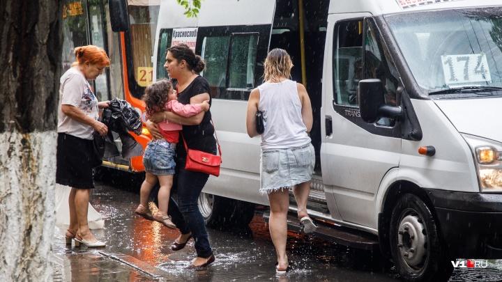 Накануне жары: в Волгоградской области июль начнётся с дождей и прохлады