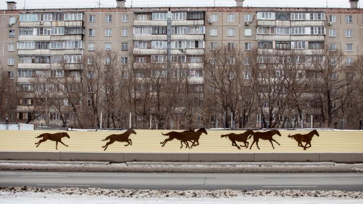 Защитные экраны на «Меридиане» в Челябинске «оживили» лошадьми. По-вашему, это ок или заскок?