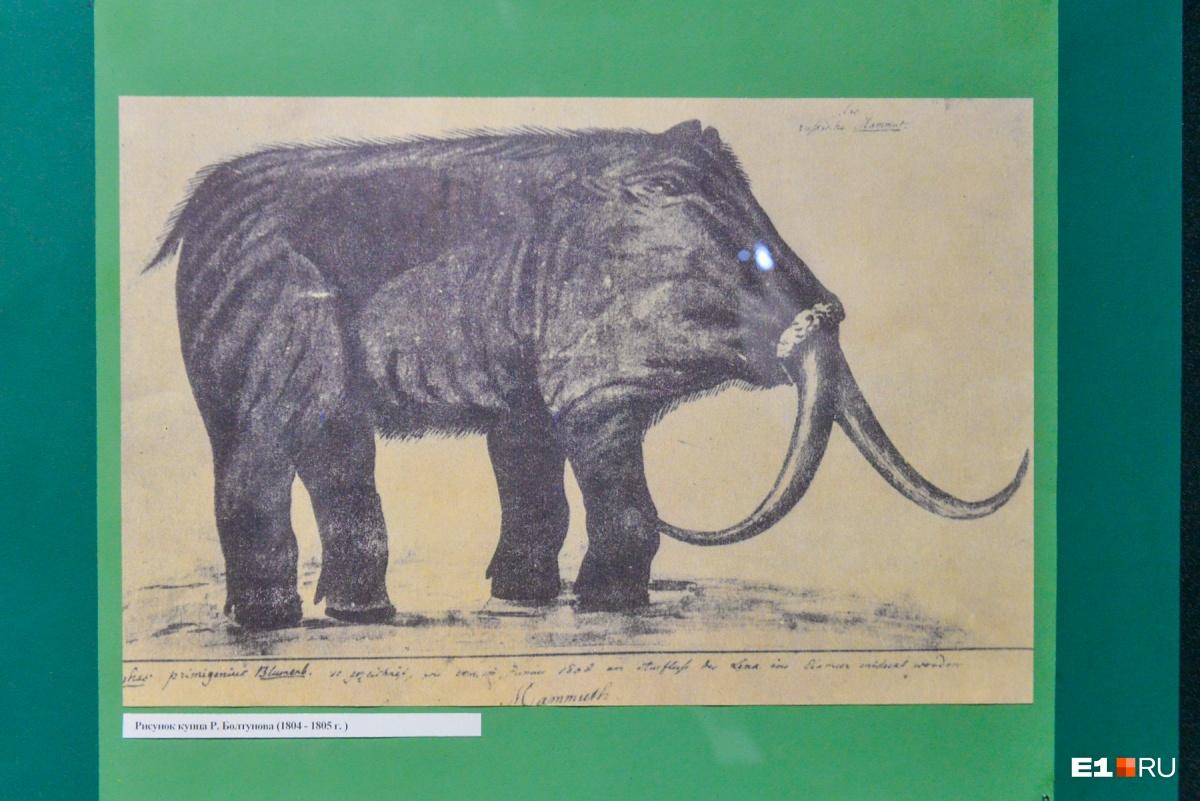 Как-то странно представляли себе мамонта наши предки