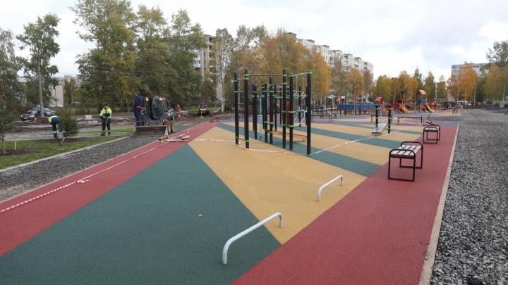 С губернатором, посадками деревьев и джиу-джитсу: 20 октября в Архангельске откроют сквер «Зарусье»