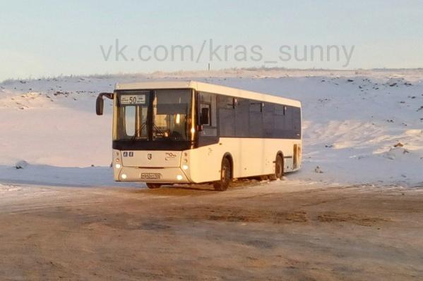 Новые автобусы заметили на конечной в «Солнечном»