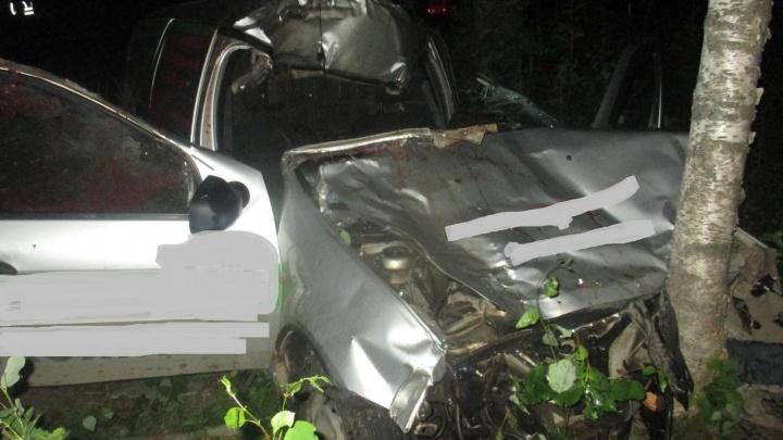 В Ярославской области в ДТП с лосем погиб мужчина
