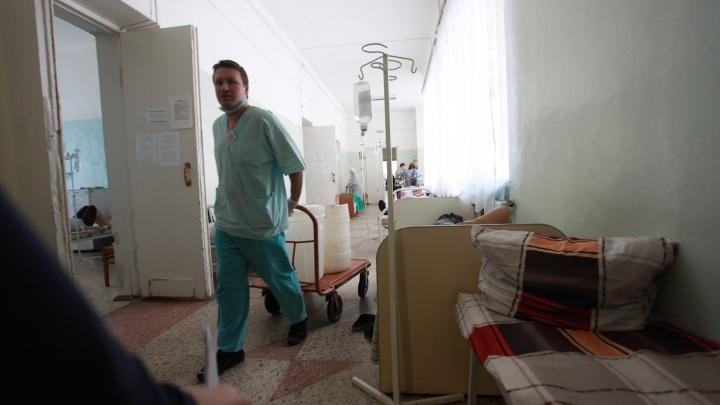 Четверо новосибирцев оказались в реанимации из-за укусов клещей