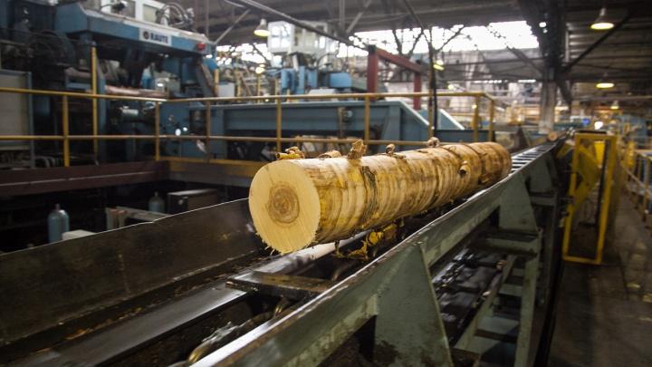 В Архангельске будут судить директора фирмы, не заплатившего более 19 миллионов рублей налогов