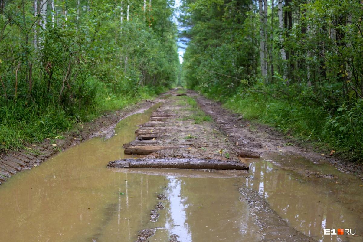Путь к местам, где стояли лагеря, один — по разбитой узкоколейке