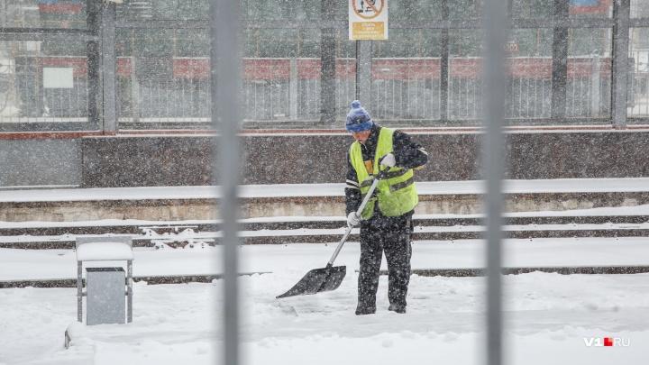 Весне дорогу: в Волгограде ощутимо потеплеет