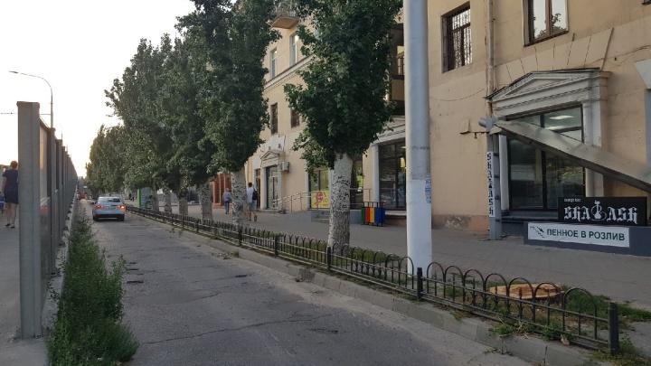 «Ураган нас вынудил»: уничтожение тополей на Комсомольской в Волгограде объяснили сильным ветром