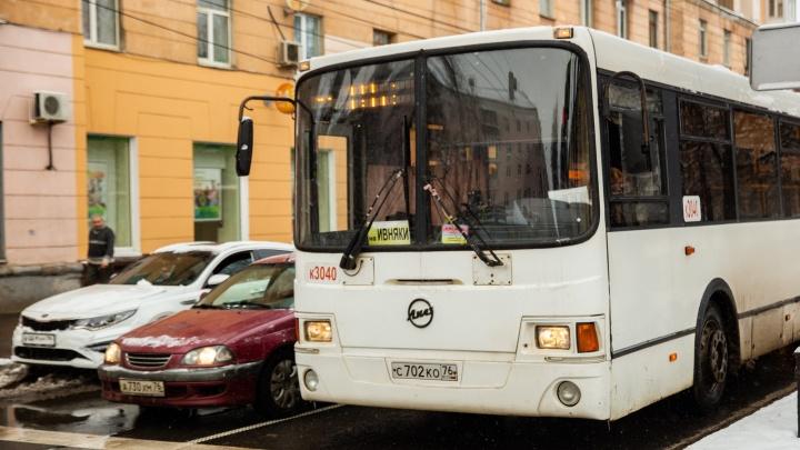 В Ярославле могут появиться выделенные полосы для автобусов и троллейбусов