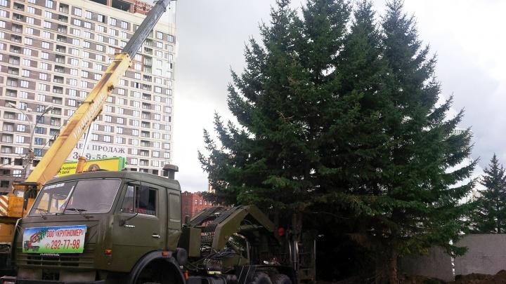 Скандальный застройщик Богдашки благоустроит сквер на улице Кирова