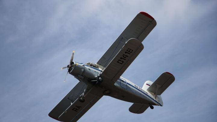«У одного — вывих конечности»: стало известно о состоянии пассажиров Ан-2, севшего в лесу Поморья