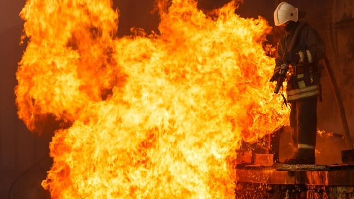 В Волгограде на острове Сарпинском едва не сгорел хозяин полыхавшего дома