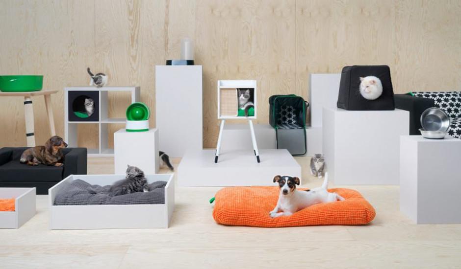 Топ-13: дизайнерские предметы для животных