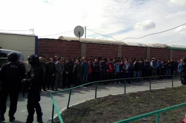 Более 50 мигрантов проверили на причастность к преступлениям