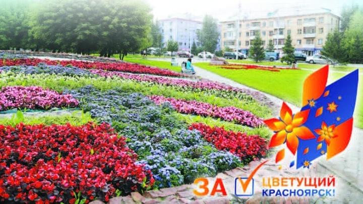 На остановках транспорта «Зеленая дружина СГК» будет раздавать семена ярких садовых цветов