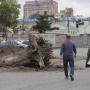 «Вы попали под обстрел»: Котова потребовала объяснить, зачем у «Родины» в Челябинске спилили деревья