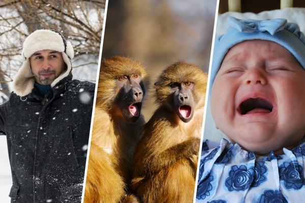 Для Новосибирска тема безучастных отцов оказалась очень актуальной
