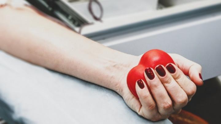 Молодых волгоградцев чиновники просят срочно сдать кровь