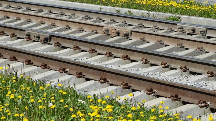 Высокинский дал старт строительству трамвайной ветки в Академический: документ