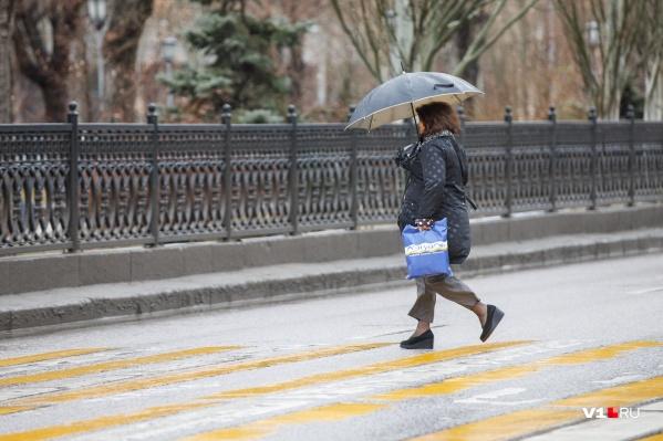 Волгоградцам советуют взять сегодня на работу зонтики