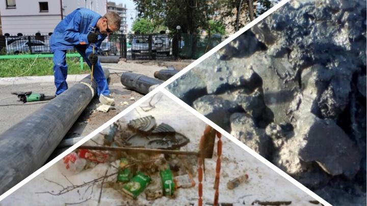 Житель Тюмени засорил канализацию пятью ведрами ватных палочек (и еще 9 самых странных находок)