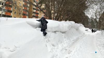В Академгородке вырос сугроб выше человеческого роста — дети лазают по нему как по горам