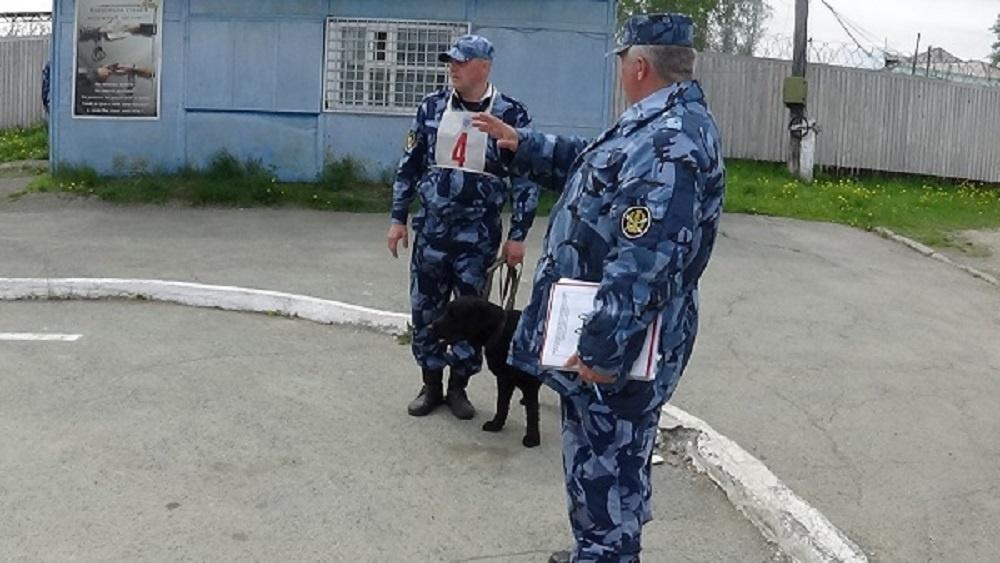 В Краснотурьинске соревнования проходили на базе ИК-3