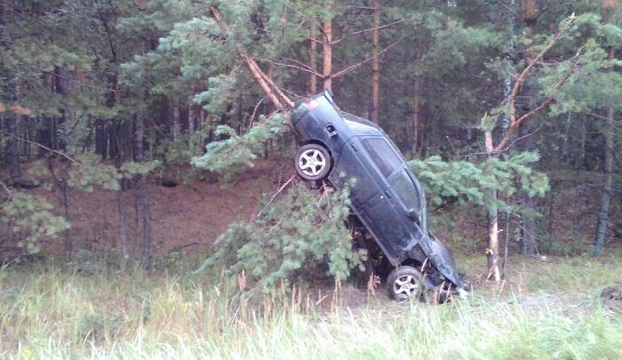 Один из автомобилей повис на сосне: водитель не справился с управлением на мокрой дороге